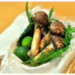 松茸狩りなら長野で決まり!一生分食べたい!おすすめの松茸狩りスポット!