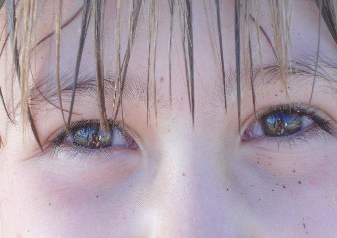 brown-eyes-775105_1280