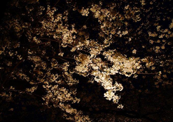 night-view-569625_1280