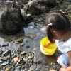 奈良吉野川で川遊びをしよう!川遊びの場所・穴場ガイド!バーベキューやキャンプは?