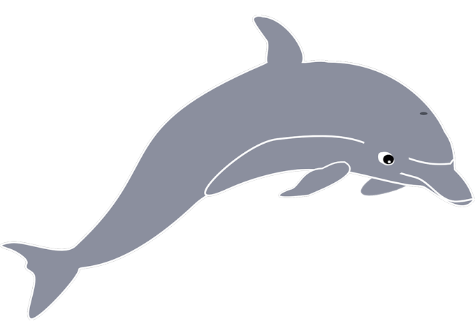 dolphin-155278_1280