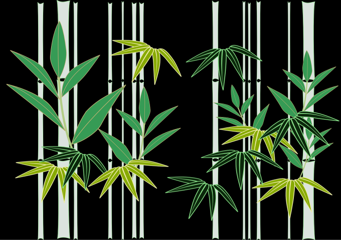 bamboo-641814_1280