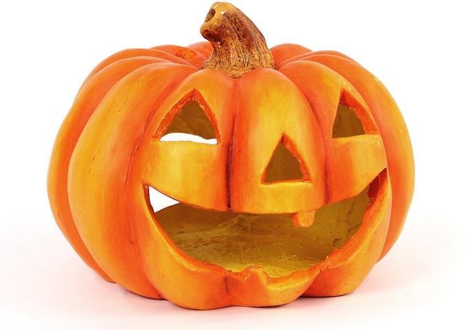 pumpkin-786668_1280
