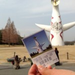 大阪万博公園コスモスフェスタ2017開花状況と見どころ総まとめ!混雑予想は?