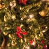 女子会クリスマスプレゼント交換【2000円まで!】2016年人気プレゼント4選!