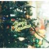 コストコクリスマスシーズン2018!混雑回避ワザ教えます!チキンの買い方は?