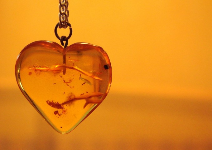 heart-1202129_1280