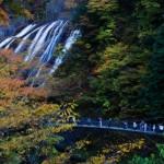 袋田の滝の紅葉2016!見頃・混雑回避ワザ総まとめ!