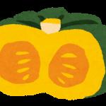 冬至にかぼちゃをなぜ食べる?あずきで運が上昇!?冬至の風習まとめ!