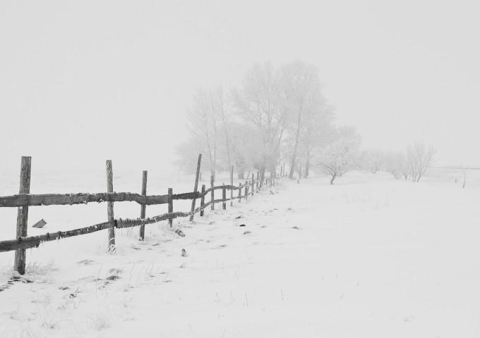 winter-20248_1280