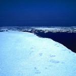 オホーツクの流氷の見頃時期はいつ??流氷はどこからくるの?海明けとは?