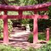 病気平癒のお守り・御利益が有名な神奈川のお寺・神社3選!お参り・ご祈祷のお作法は?