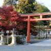 病気平癒のお守り・御利益が有名な東京のお寺・神社3選!お参り・ご祈祷のお作法は?