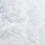 八甲田山の樹氷見ごろベストシーズンは?服装はどうする?ライトアップは?