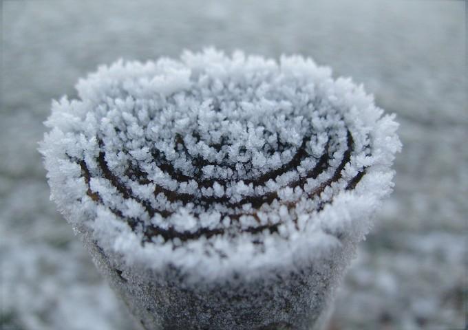 winter-235599_1280
