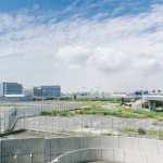 羽田空港混雑状況・予想平日は?早朝は?事前予約できるって知ってた?