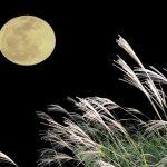 片見月は縁起が悪いという由来はいつから?中秋の名月と片見月の違いは?