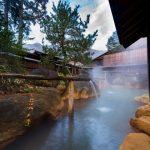 冬の温泉旅行にペット(猫)同伴可能な九州の宿3選!一緒にお風呂にはいれるの?