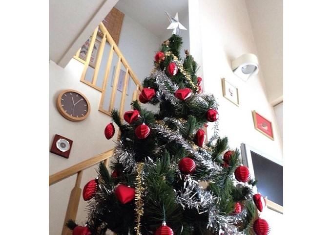 クリスマス ツリー の 根元