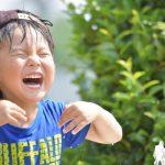 富山県とやま健康パークのじゃぶじゃぶ池いつから遊べる?テントはOK?楽しみ方ガイド!