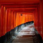 京都「お茶と酒 たすき」かき氷が食べたい!待ち時間は?夏以外でも食べれるの?