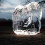 夏本番!美味しい氷を冷蔵庫で作る方法とは?水道水が一番美味しい!?