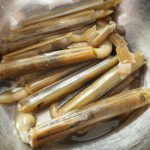 福岡でマテ貝が採れる潮干狩りスポットは?マテ貝の時期や採るコツは?