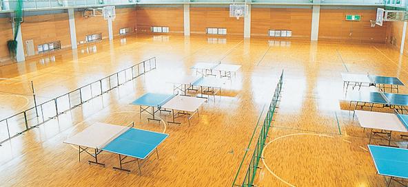 sports_gymnasium03